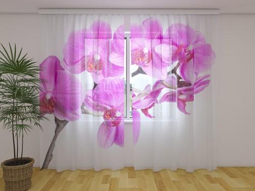 """Dieninė  užuolaida """"Laimės orchidėja"""""""