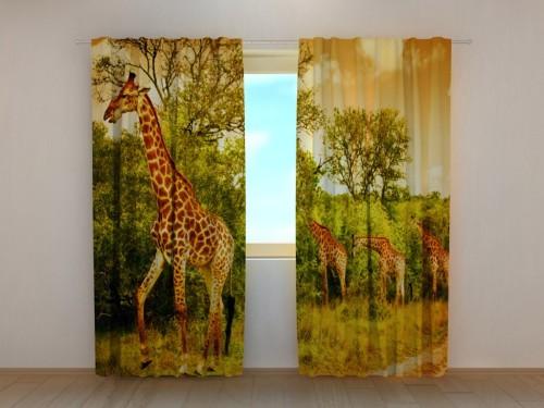 """Naktinės užuolaidos """"Žirafos gamtoje"""""""